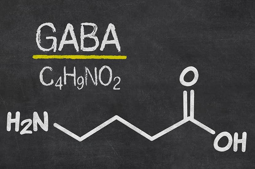 Estudios demuestran que GABA podría capaz de aumentar la masa muscular